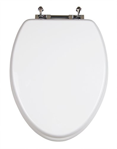 Toilet Seat With Potty Seat Attached Toiletandpottyseats Com