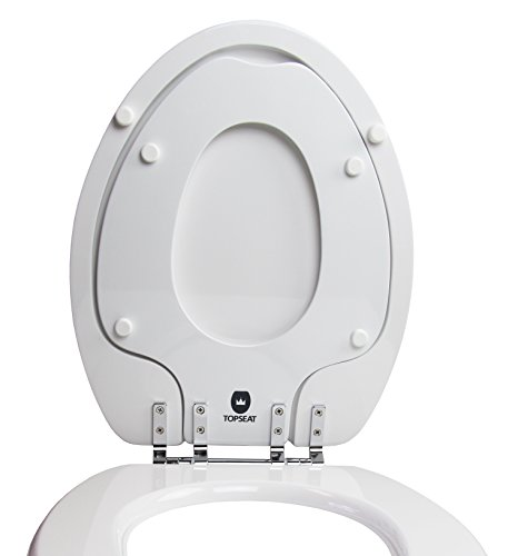 Toilet Seat With Potty Seat Attached   ToiletAndPottySeats.com