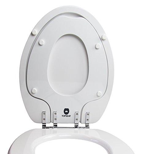 Toilet Seat With Potty Seat Attached Toiletandpottyseatscom